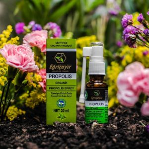 Organic Throat Spray with Propolis